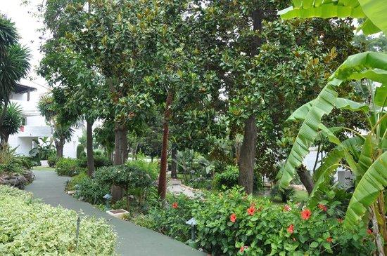 Puente Romano Beach Resort & Spa Marbella: отель