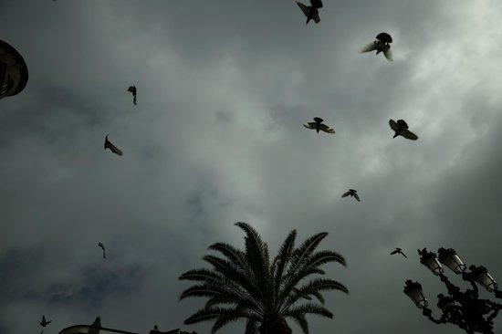 Vegueta: небо над площадью перед театром