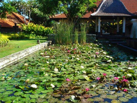 Grand Hyatt Bali: рецепшн