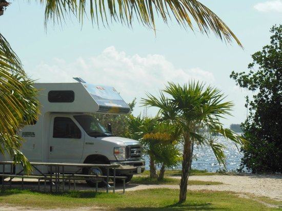 Boyd's Key West Campground: our site at Boyds