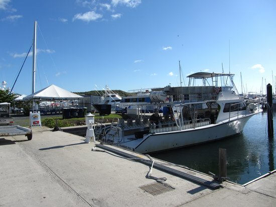 Sea Ventures Dive Center: Harbor where boat is docked in the Marina
