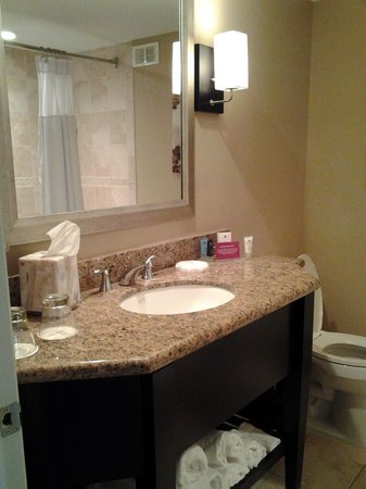 Crowne Plaza Orlando Downtown: Very clean bathroom