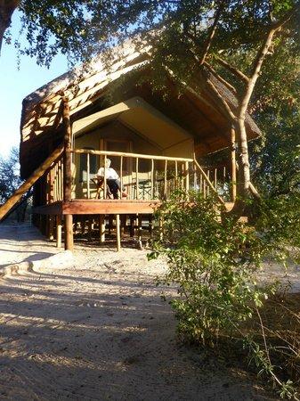 Dinaka Safari Lodge: Die Safari Zelte