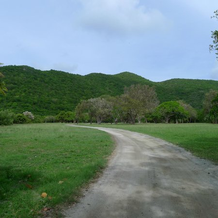 Guana Island: Walking to the beach