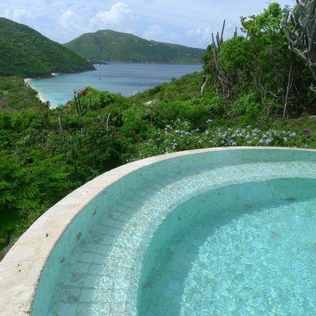Guana Island: Infiniti pool