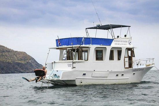 Single Fin Surf Charters : Boat at Ollie's Point
