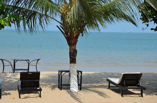 Queenco Hotel & Casino : пляж