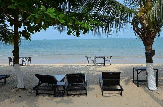 Queenco Hotel & Casino : можно обедать или ужинать прямо у воды