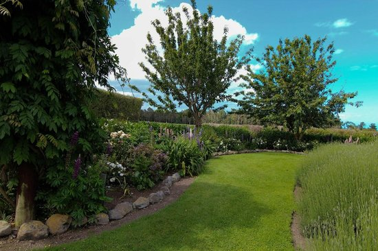Lavendyl Lavender Farm : The garden has over 200 kinds of lavender.