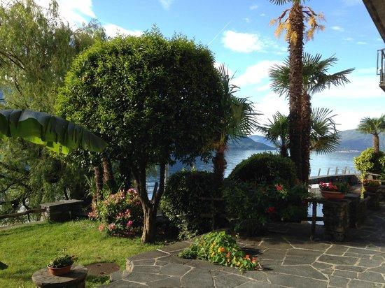 Art Hotel Posta al Lago: Orangenbaum im Garten