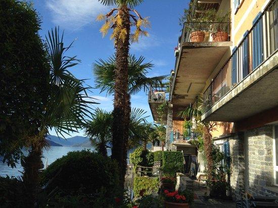 Art Hotel Posta al Lago: Aus dem Garten nach oben geschaut!