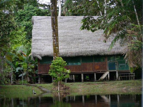 Ivy Mara Ey Lodge : En el corazón de la Reserva Nacional Pacaya Samiria