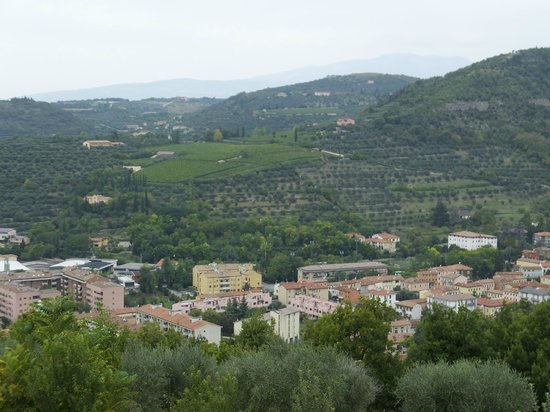 Agriturismo Il Pianetto: View of City & Vineyards