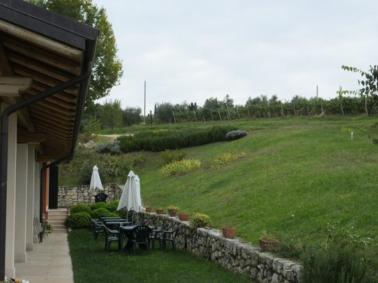 Agriturismo Il Pianetto: View of hotel & vineyards