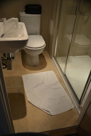 Ambassadors Hotel : The bathroom was clean, but quite small.