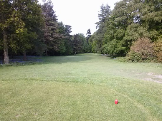 Lingfield Park Marriott Hotel & Country Club: Golf course