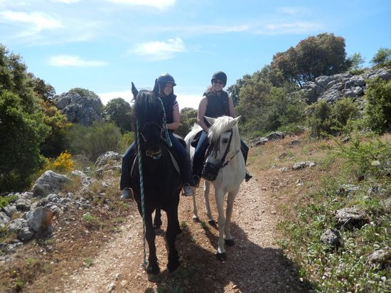 Sierra Pelada Horse Riding School: The horses and the view