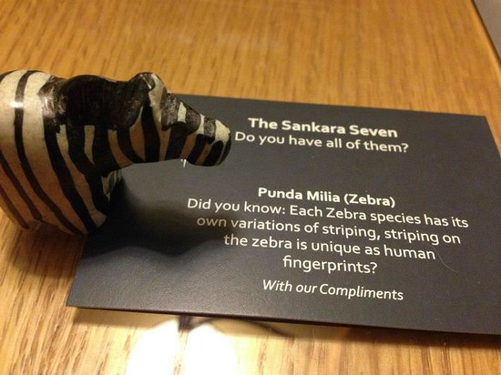 Sankara Nairobi: Love it, this is like a fastfood kiddies gift for grownups, collect them all!