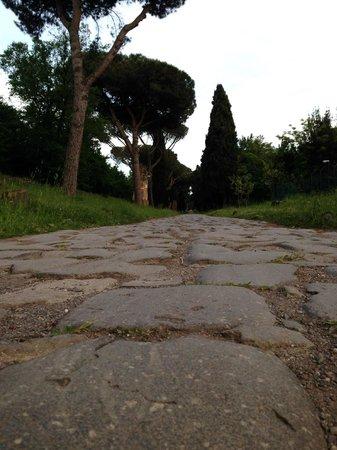 Parco Regionale dell'Appia Antica : Appia Antica