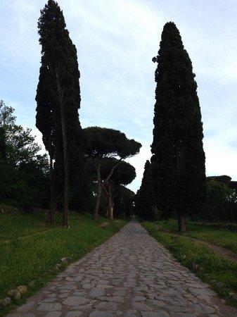 Parco Regionale dell'Appia Antica: Appia antica