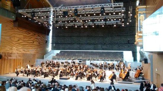 Casa da Musica: Interior