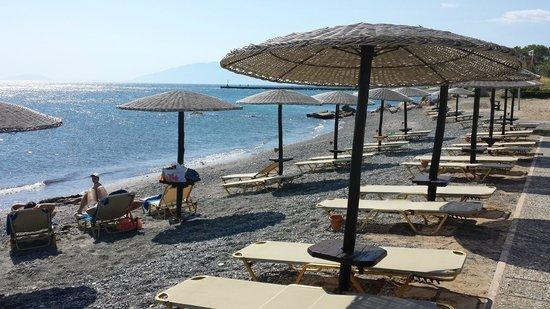 Grecotel Kos Imperial Hotel: Private beach