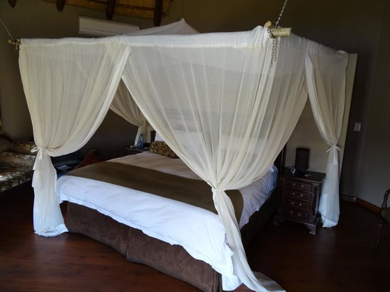 Arathusa Safari Lodge : kamer