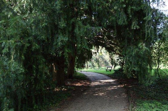 Hotel Bassiana: Botanical Garden