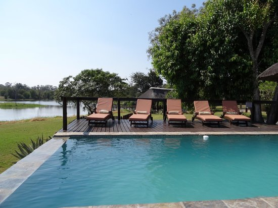 Arathusa Safari Lodge: zwembad