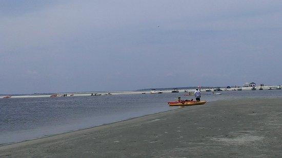 Kayak Amelia: sandbar stop