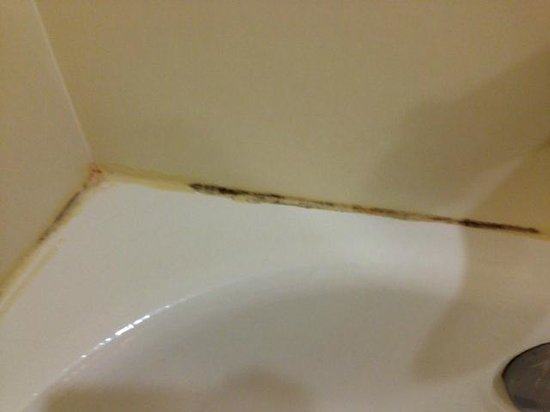 Comfort Suites West of the Ashley: portion of mold in bath
