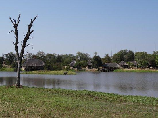 Arathusa Safari Lodge: .