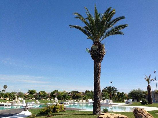 Hotel Borgo Pantano : Pool