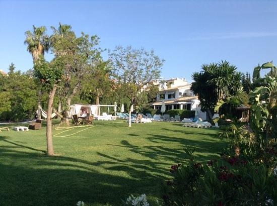Casa la Concha: отель утопает в зелени