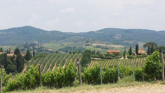 Tuscany Vespa Tours: Tuscan beauty