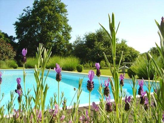 La Longere, Luxury b&b : Pool and garden