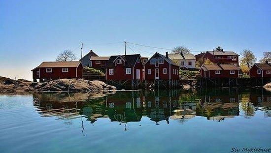 Svinoya Rorbuer - BaseCamp Lofoten: Idyllic Svinøya in Svolvær