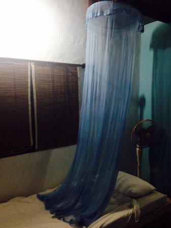 Full Moon Beach Resort: Inappropriately sized mosquito net