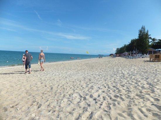 Strand am Lamai Wanta