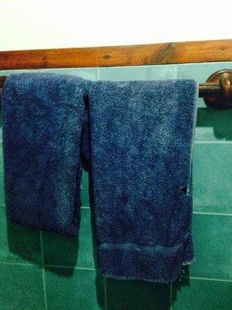 Full Moon Resort: Absolutely disgusting towels