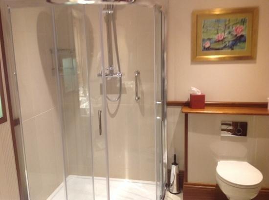 Harvey's Point : Superb Shower.