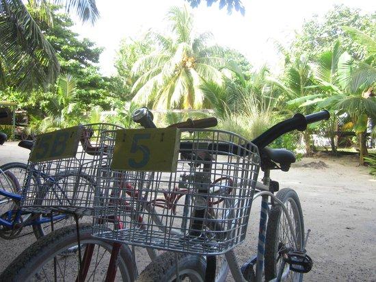 Colinda Cabanas: The Bikes!