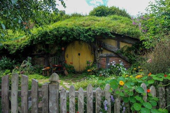 Hobbiton Movie Set Tours: Cute Hobbit House