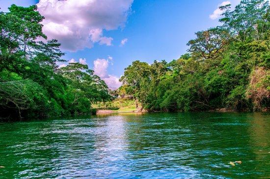 Dream Valley Jungle Lodge : River cruise