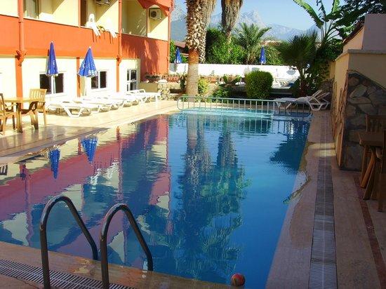 Sefikbey Hotel : Бассейн