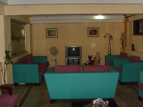 Sefikbey Hotel : Лобби