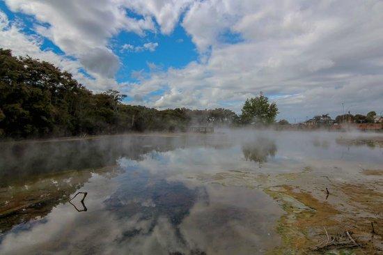 Stream rising from a boiling lake at Kuirau Park