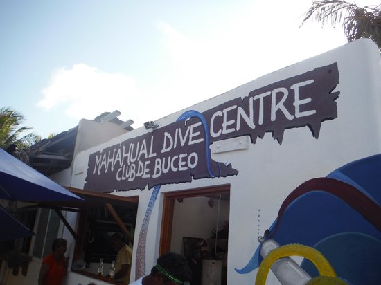 Mahahual Dive Centre: The best diveshop