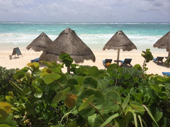 Encantada Tulum : Beautiful beach 3