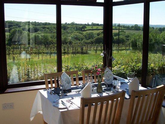 CWM Deri Vineyard Restaurant: Restaurant overlooking Vineyard & National Park
